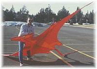 George Peters Pterosaur Kite Made by Tom Tinney